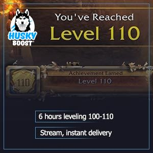 100 110 boost: cheap price leveling with high speed and stream