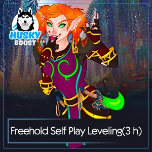 WoW Self Play Freehold 110 120 Level Boost
