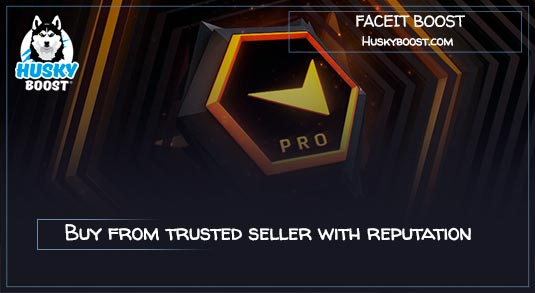 Cheap CsGo Faceit Elo Boost Service: Buy with Best Price on Huskyboost
