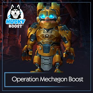 Operation Mechagon Boost Service